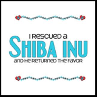 I Rescued a Shiba Inu (Male Dog)