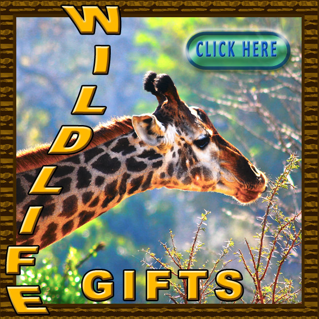 Wildlife Gifts