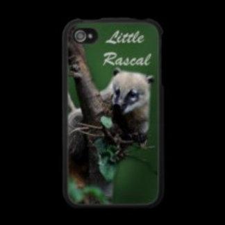 * Coati / Raccoons