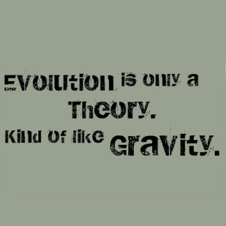 Evolution is only a theory, kind of like gravity.