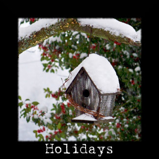 Holidays / Special Occassions