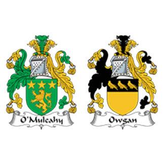 O'Mulcahy - Owgan