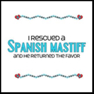 I Rescued a Spanish Mastiff (Male Dog)