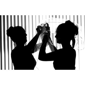 Veil Adjust Bride Photograph, B/W,  Wedding Design