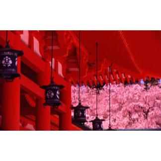 Asia, Japan, Kyoto, Heian shrine in spring.