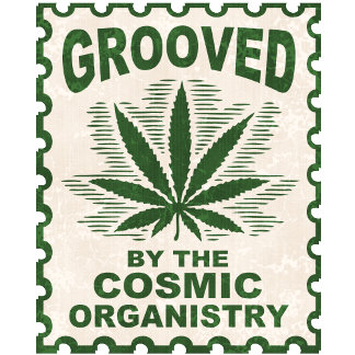 Cosmic Organistry