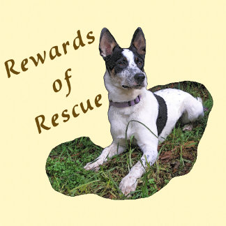 Rewards  of Rescue