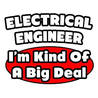 Electrical Engineer...Big Deal