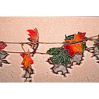 fall leaves sketch image autumn leaf orange