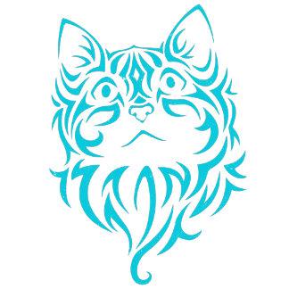 Cat (Housecat)