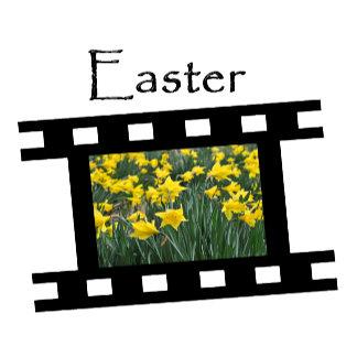Z8 Easter