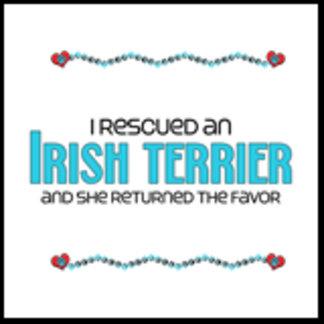 I Rescued an Irish Terrier (Female Dog)