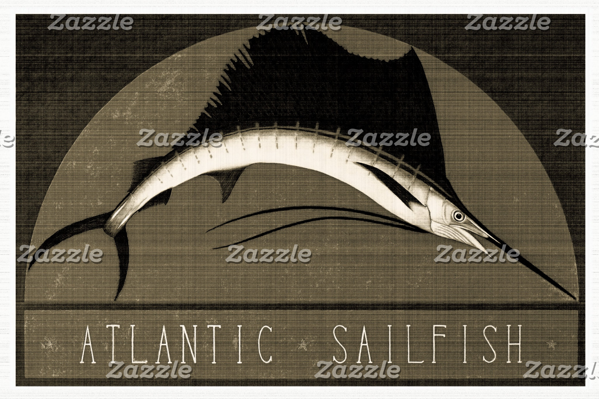 Atlantic Sailfish Vintage Black & White