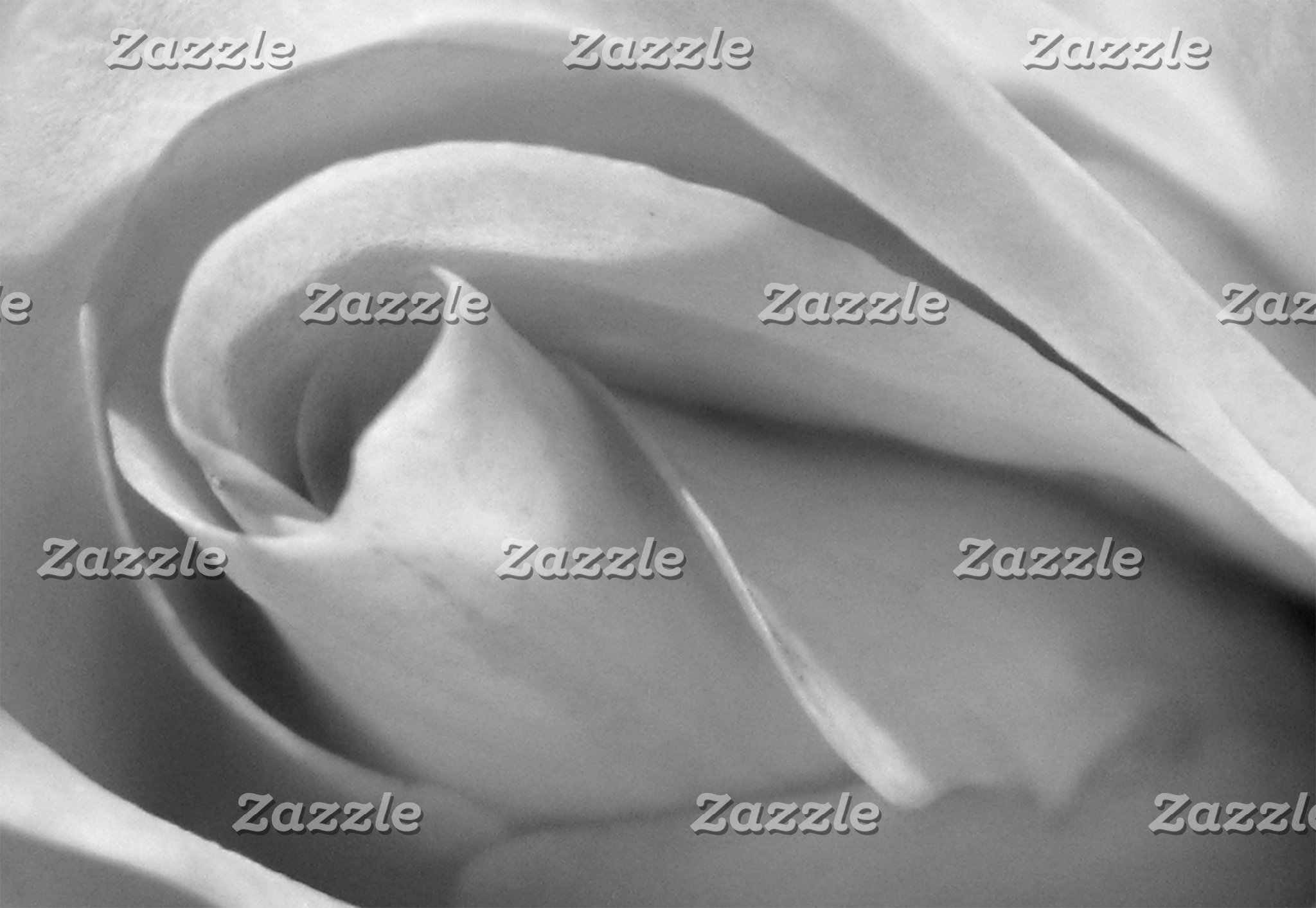 POSTAGE Rose