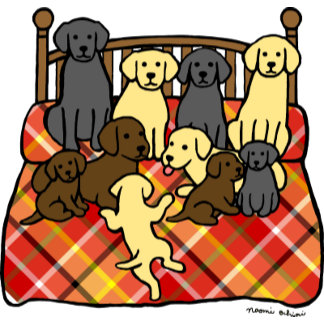 Labradors King Sized Bed