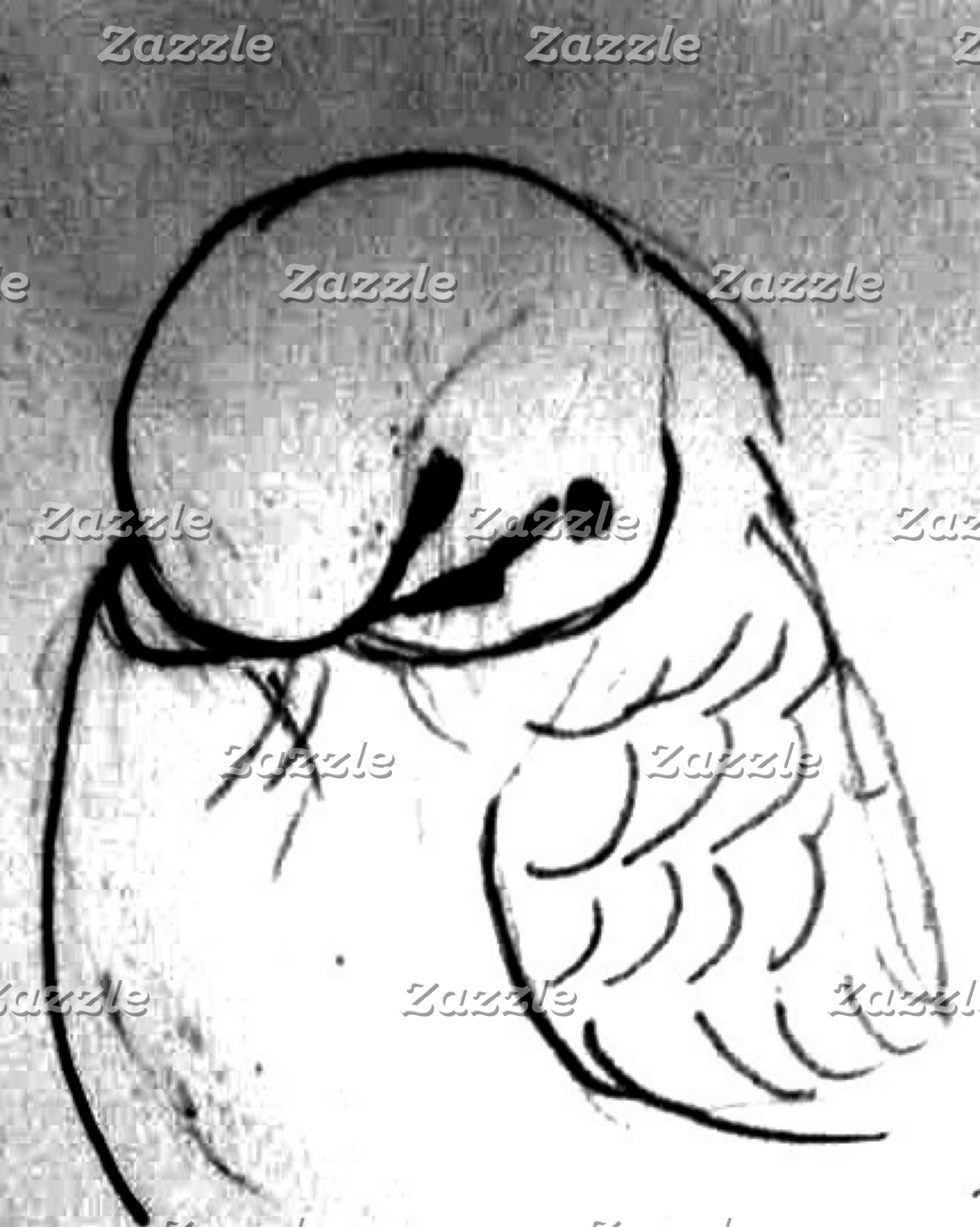 Budgie Drawings