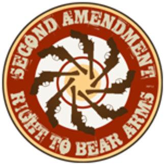 Second Amendment #2
