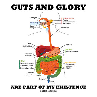Guts And Glory Are Part Of My Existence