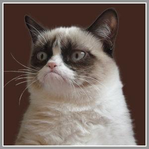 Grumpy Cat As Grumpy Santa Quot I Was Santa Once It Was Horri