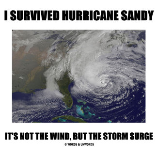 I Survived Hurricane Sandy It's Not The Wind But