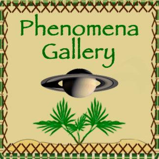 Phenomena Gallery