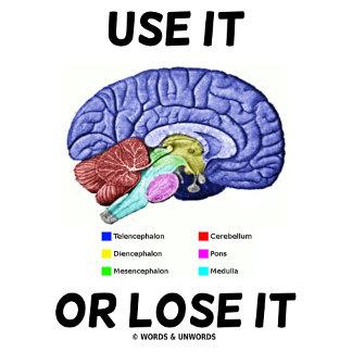 Brain (Humor)