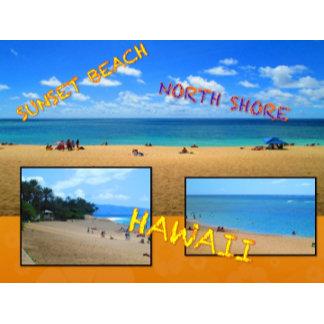 HAWAII COLLAGE #27