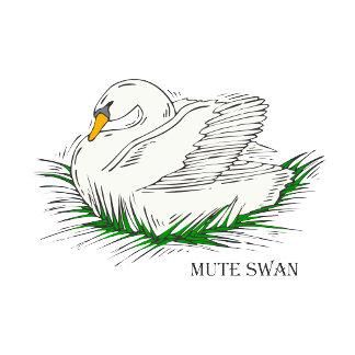 Swacy Swan