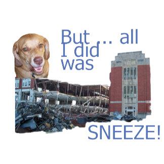 Buddy Sneezed