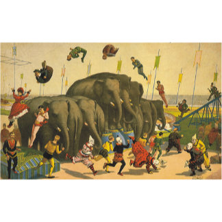 Elephant Acrobats