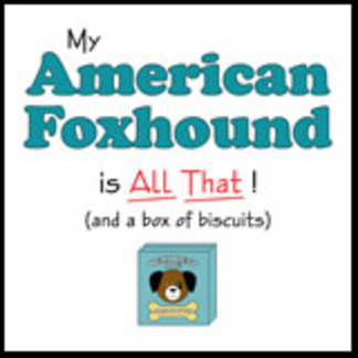 My American Foxhound is All That!