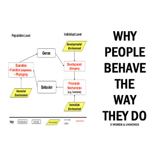 Why People Behave The Way They Do (Sociobiology)