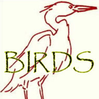 Dodos, Herons, Birds