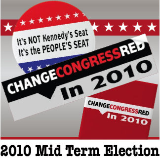 2010 Mid Term Election Issues