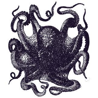 Vintage Octopus Illustration