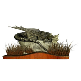Sleeping Dragon on a Rock