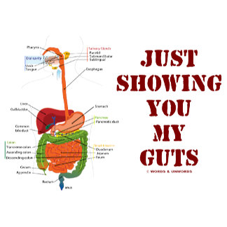 Just Showing You My Guts (Digestive System Humor)