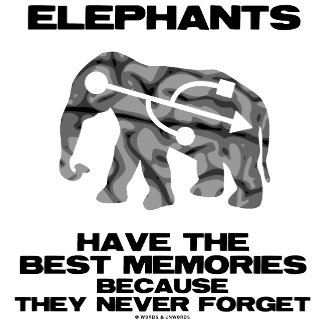 Elephants Have The Best Memories Never Forget