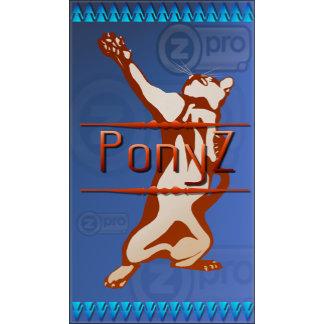 PonyZ
