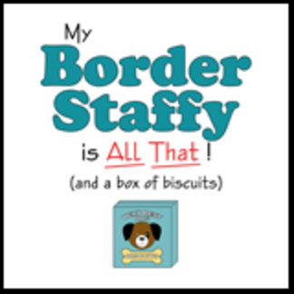 My Border Staffy is All That!