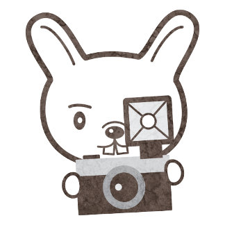 Photographer Rabbit
