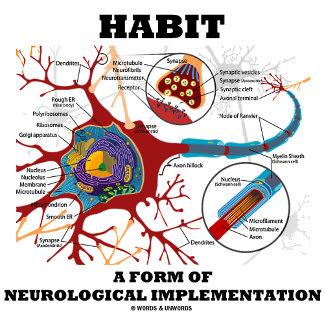 Habit A Form Of Neurological Implementation Neuron