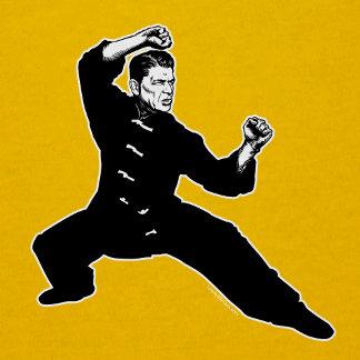 Kung Fu Reagan