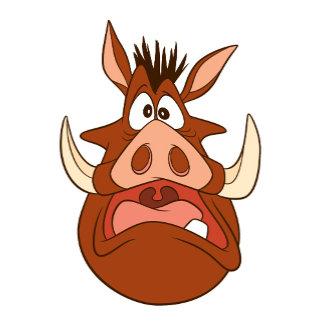 Pumba's Head