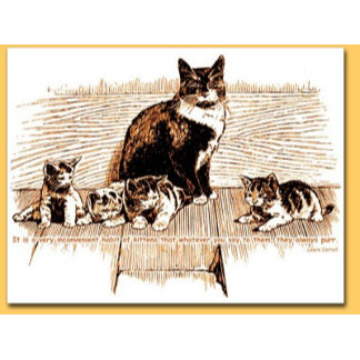 Kittens: They Always Purr