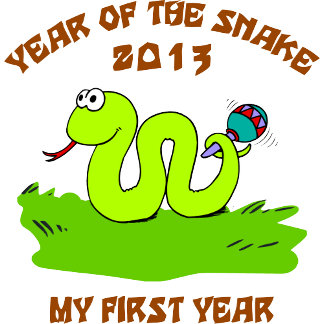 Born Year of The Snake 2013 T-Shirts Gifts
