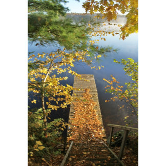 Autumn leaves on the steps and dock