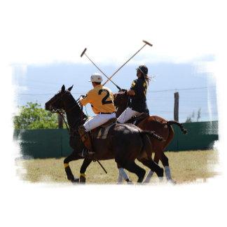 Polo Horse Match