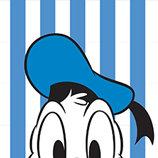 Donald Duck | Peek-a-Boo