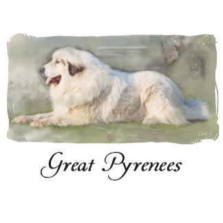 02# Great Pyrenees Aaron Apparel